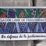 Ecuador_libre_de_transgenicos_5